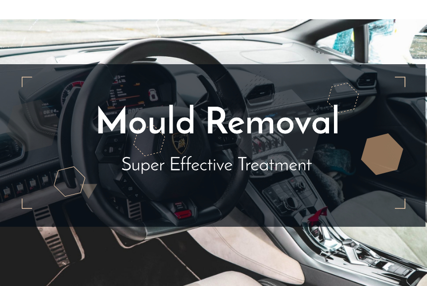 Car Mould Removal – The Super Effective Treatment