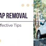 Reveal These Super Effective Tips for Removing Stubborn Tree Sap from your Car